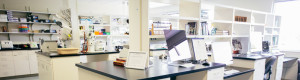 4 نکته برای طراحی داخلی آزمایشگاه علمی - پایازیست